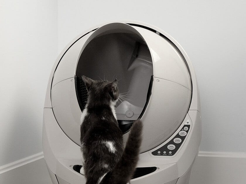 Switched off Litter-Robot and cat