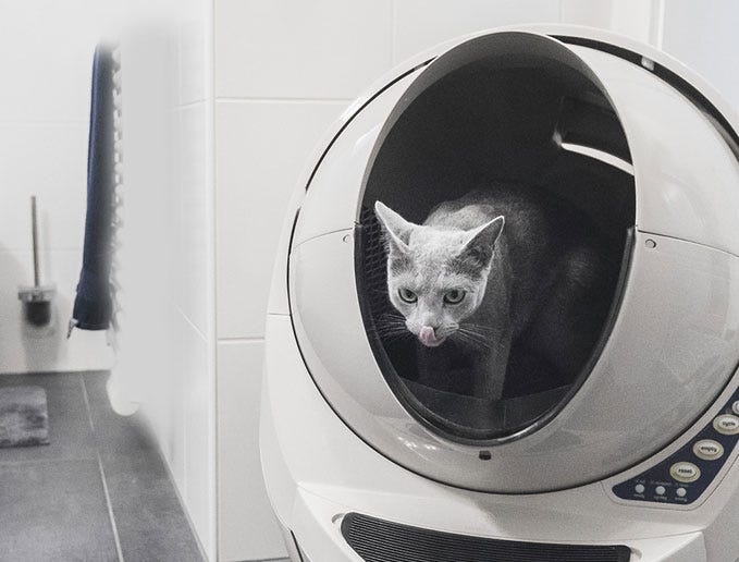 Cat using Litter-Robot