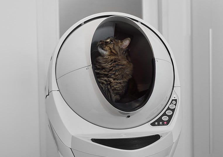 Cat using spacious Litter-Robot