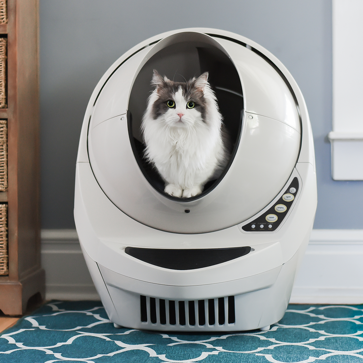Automatic Self Cleaning Litter Box For Cats